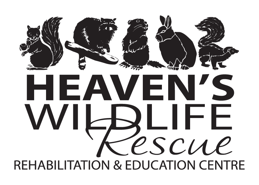 Heaven's Wildlife Rescue Rehabilitation & Education Centre
