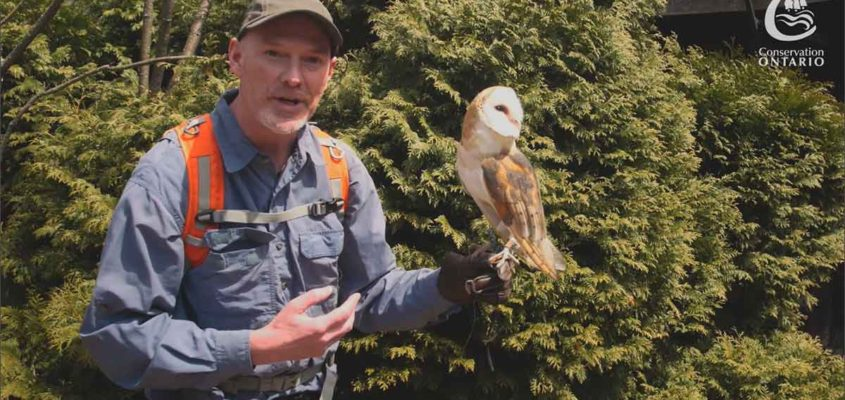 Ontario conservation videographer