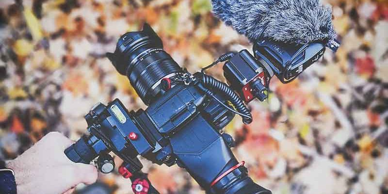 Nature videographer in Canada