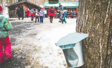 Maple syrup festivals in Ontario
