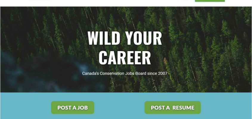 Best environmental job site in Canada