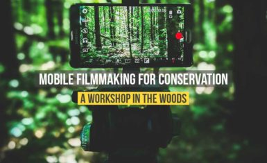 Smartphone video workshop for the environment in Canada