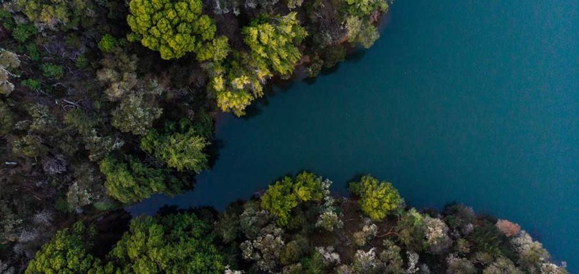 Aerial videographers for conservation in Canada
