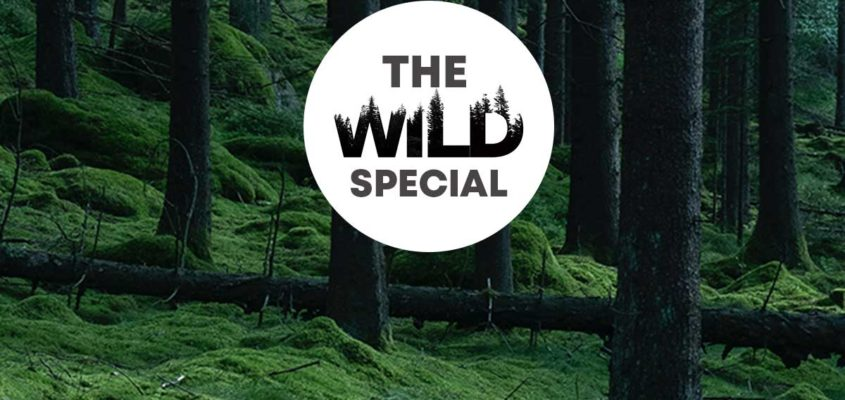 Videos for conservation organizations Ontario Canada