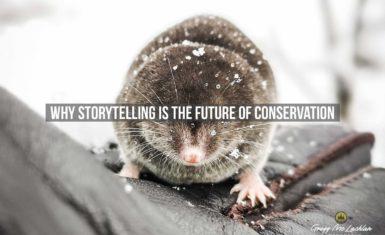 Nature storytelling
