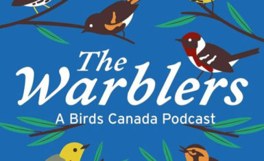 The Warblers bird conservation podcast