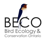 Bird Ecology and Conservation Ontario