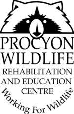 Procyon Wildlife Rehabilitation and Education Centre