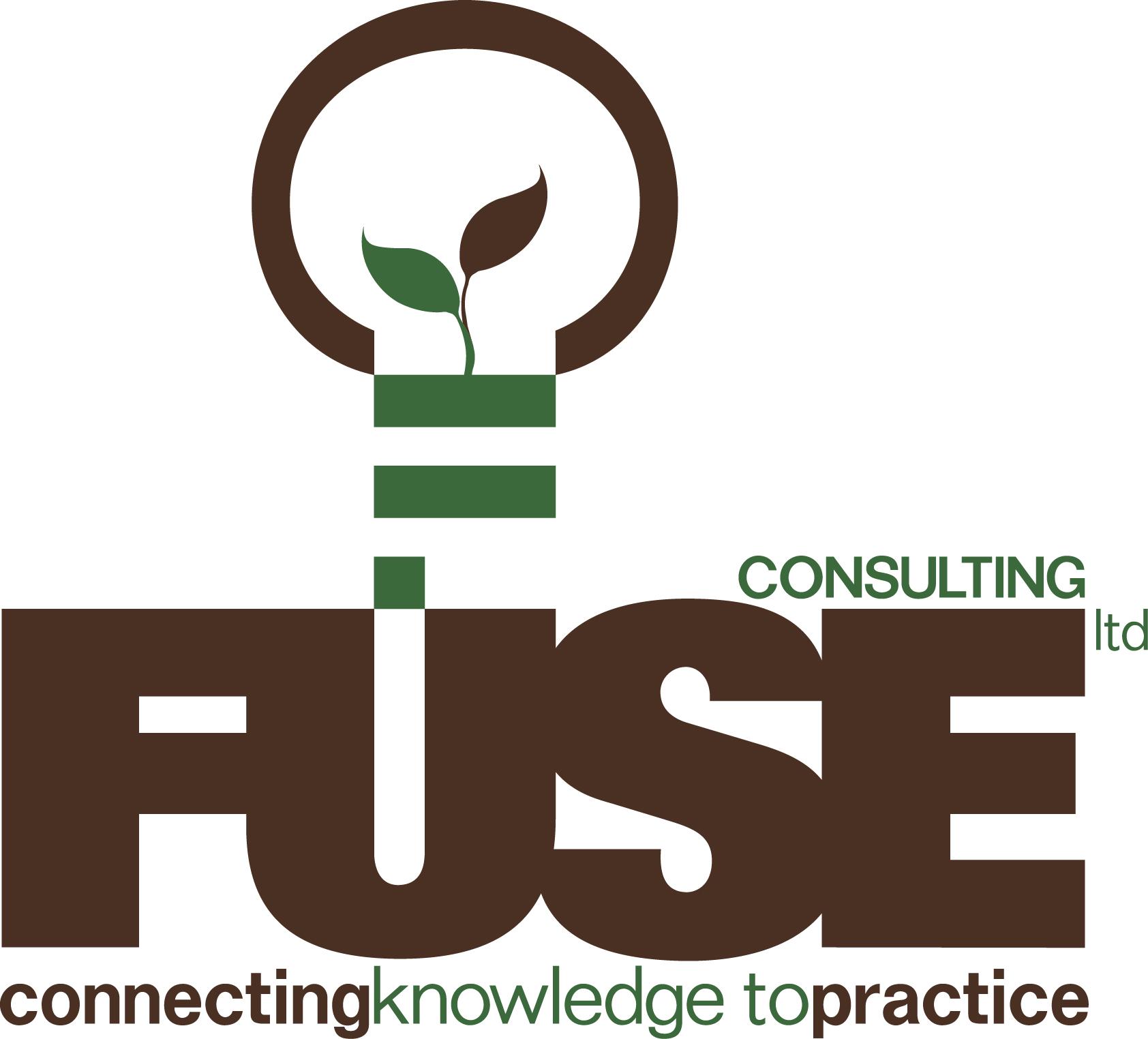 Fuse Consulting Ltd.