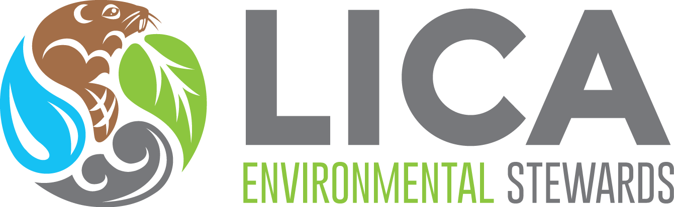 Lakeland Industry & Community Association